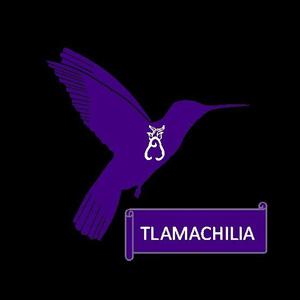 Logo de Tlamachilia